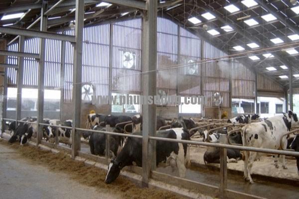 Phun sương Hoàng Hà dùng được sử dụng trong chăn nuôi ở Tây Ninh